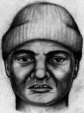Farmington Hills Police Sketch of Suspect