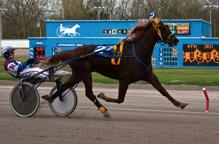 Harness Racing at Northville Downs