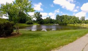Pond in Plymouth Park