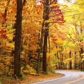 michigan-road-in-fall